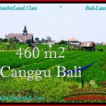 JUAL MURAH TANAH di CANGGU BALI 460 m2 di Canggu Brawa