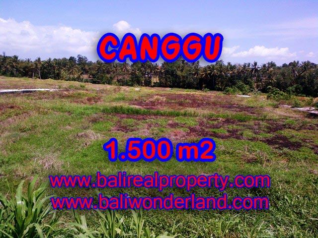Jual tanah di Bali 1,500 m2 di Tumbak Bayuh