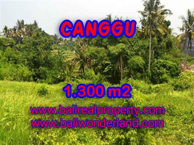 TANAH DI CANGGU MURAH DIJUAL TJCG136 - KESEMPATAN INVESTASI PROPERTY DI BALI
