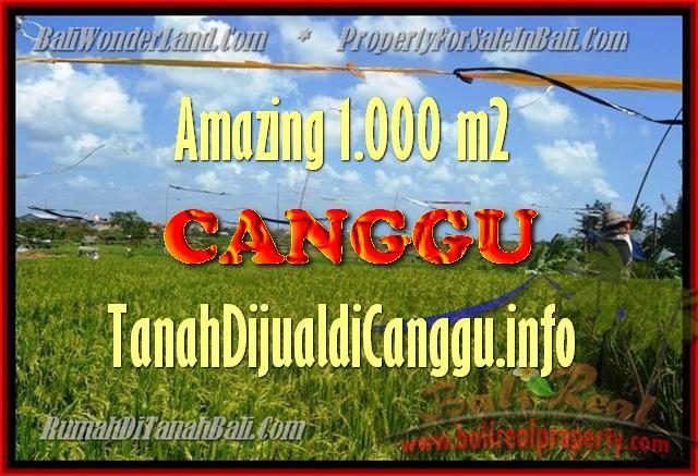 JUAL MURAH TANAH di CANGGU 1.000 m2  View Sawah, lingkungan villa