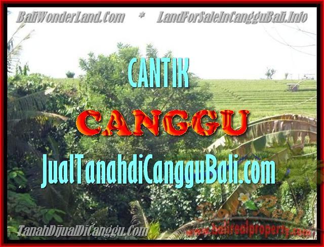 JUAL MURAH TANAH di CANGGU 17 Are View sawah dan sungai