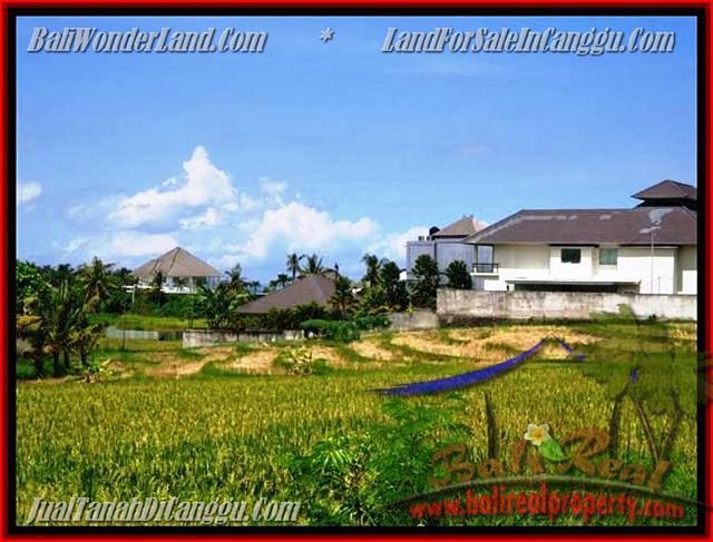 DIJUAL MURAH TANAH di CANGGU BALI 930 m2 di Canggu Pererenan