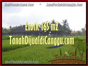 JUAL TANAH di CANGGU BALI TJCG158