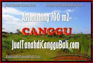 TANAH MURAH di CANGGU BALI DIJUAL TJCG155