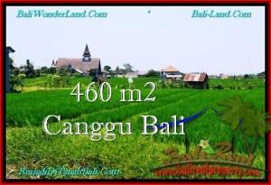 JUAL MURAH TANAH di CANGGU 460 m2 View sawah, lingkungan villa