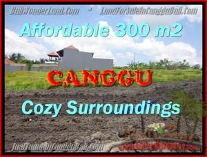 JUAL TANAH di CANGGU Untuk INVESTASI TJCG157