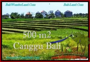 TANAH MURAH di CANGGU DIJUAL 500 m2 di Canggu Brawa