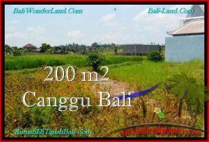 TANAH MURAH di CANGGU 200 m2  View sawah, lingkungan villa